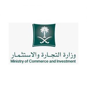 MCI Customer Logo