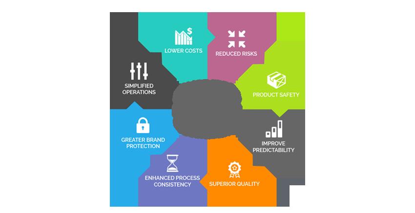 Business Process Management - Dubai