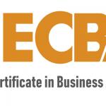 Entry Certificate in Business Analysis (ECBA) - Riyadh